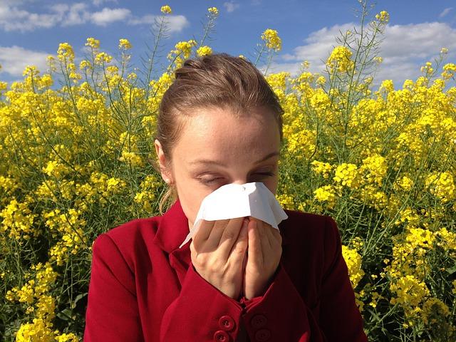 Allergie Gräser und Blüten